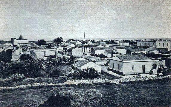 Anni 50 -Codaruina