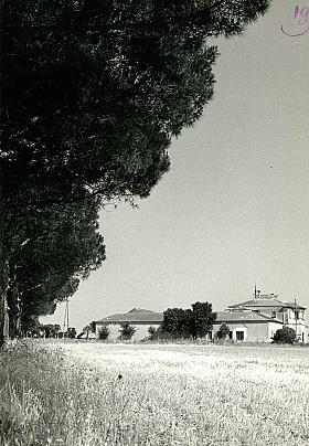 Codaruina -Azienda Stangoni