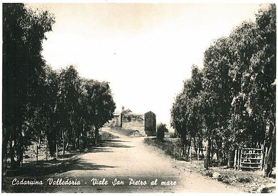 Viale San Pietro a Mare