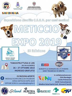 locandina meticcio expo 2019 testo news