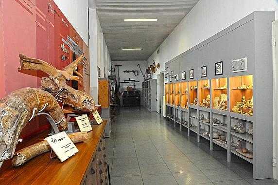 F1 panoramica-fossili 1