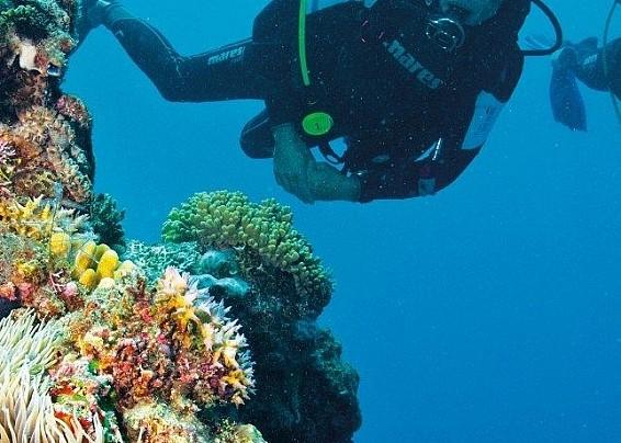 Karibu Diving