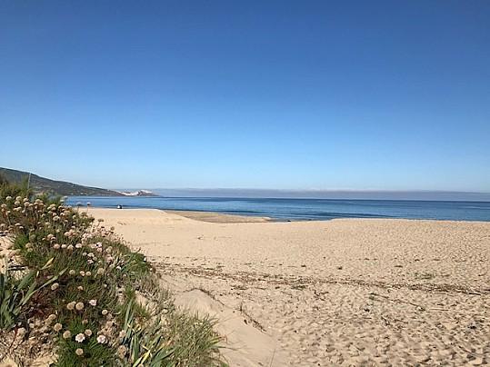 Spiaggia San Pietro 8
