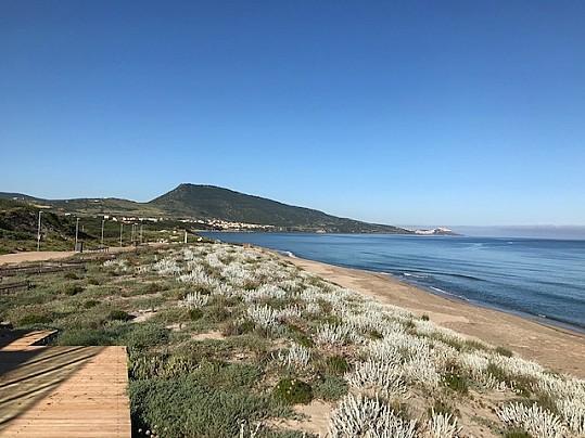 Spiaggia San pietro 5