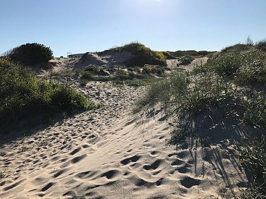 Spiaggia San Pietro Dune