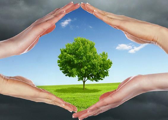 Qualità dell'aria e cattivi odori: il Comune attiva una rete di monitoraggio tra i cittadini