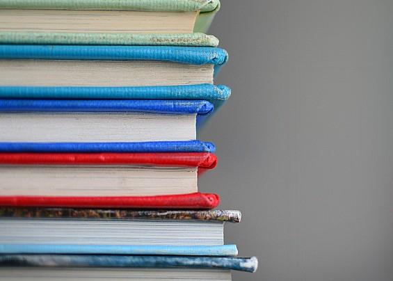 La Biblioteca di Bagnolo in Piano - Libri Comodamente a Casa Tua