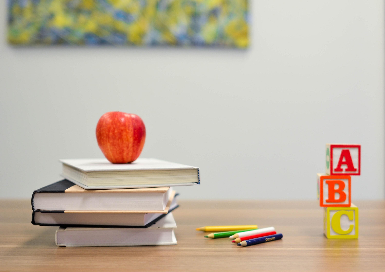 PIANO DIRITTO ALLO STUDIO anno scolastico 2020/2021