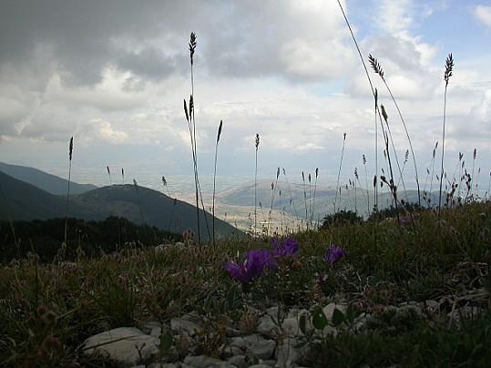 vallelonga-da-macchia-tavana-3