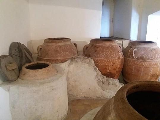 Museo Civico Archeologico_Olearia02